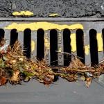 Gestión sostenible de las aguas pluviales en las ciudades